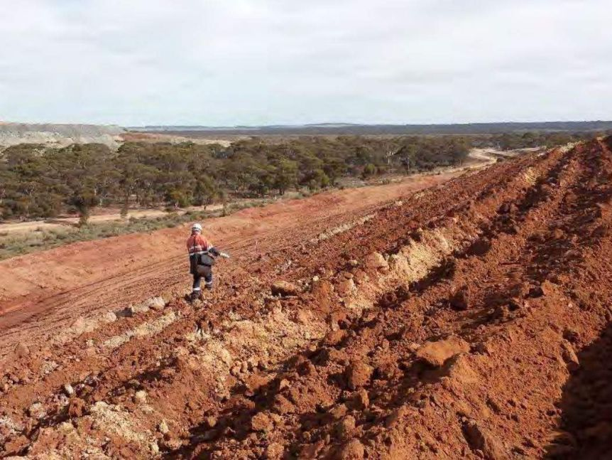 A mine worker walking through land which is being rehabilitated.